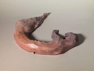 Musa paradisiaca, 'Coelho morto / Dead rabbit', 2015