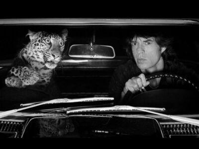Albert Watson, 'Mick Jagger in Car with Leopard, Los Angeles', 1992