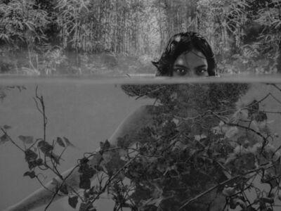 Marcel van der Vlugt, 'The Pond', 2017