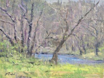 John Stanford, 'Mountain Spring', ca. 2017