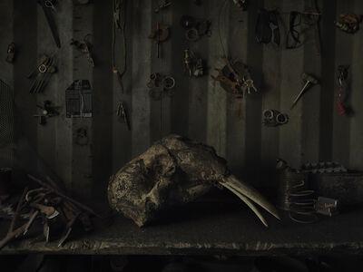 Evgenia Arbugaeva, 'Untitled 85', 2019-2020