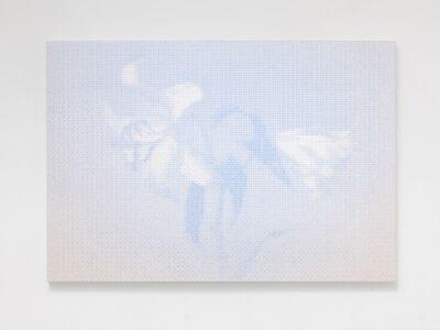 Daisuke Ohba, 'LOG (Lily)', 2014