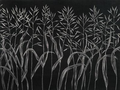 Margot Glass, 'Grasses (5)', 2019