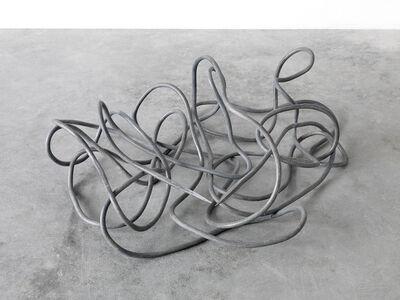 Paolo Icaro, 'Percorso Neuronale, liquida gravità', 2013