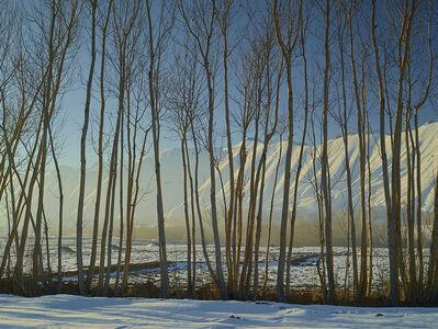 Simon Norfolk, 'Time Taken 6, Late Winter', 2013-2014