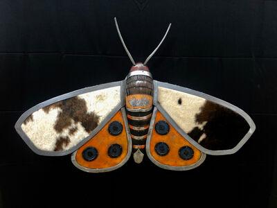 Bates Wilson, 'Garden Tiger Moth', 2019