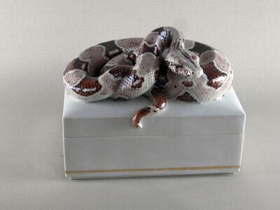 Naoto Tabata, 'BOX Snake', 2016