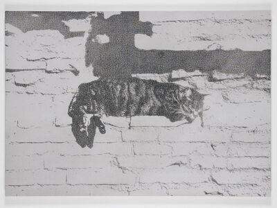 Martin Bennett, 'Static Image Painting/(23)/Cat/Largo Argentina', 2008