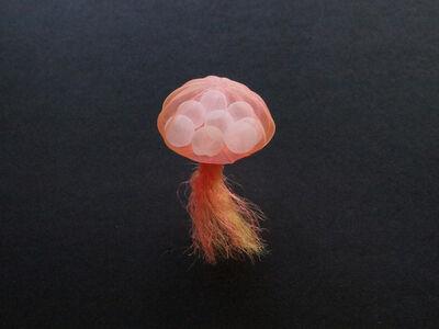 Mariko Kusumoto, 'Jellyfish 5', 2020