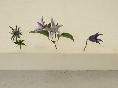 casper sejersen, 'Three Flowers in the Right Order', 2019