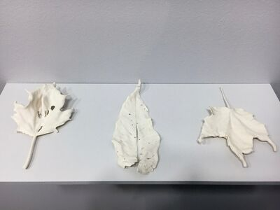 Mary Sweeney, 'Groups of Leaves', 2016