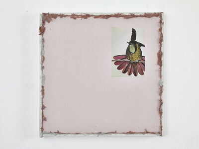 Paul Merrick, 'Untitled (Hummingbird#1)', 2015