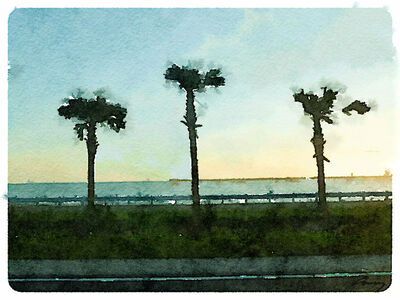 Anne M Bray, 'Gulf Sunset, FL', 2014