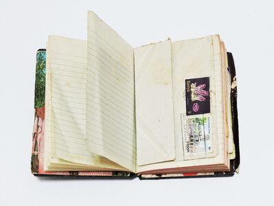 Antonio Caro, 'Apuntes de Viaje (Brasil)', 1980-1902