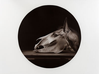 Hynek Martinec, 'Flogging Baroque Horse', 2017