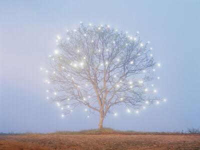 Lee Jeonglok, 'Tree of Life #1', 2007