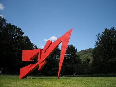 Alejandro Dron, 'Raca', 2008