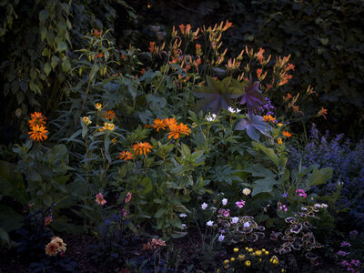 Anna Beeke, 'Midnight in the Garden #212', 2019