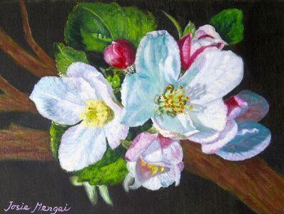 Josie Mengai, 'Macieira's flowers', 2019