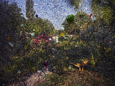 Abelardo Morell, 'Tent-Camera Image on Ground: View of Monet's Gardens with Wheelbarrow, Giverny, France', 2015