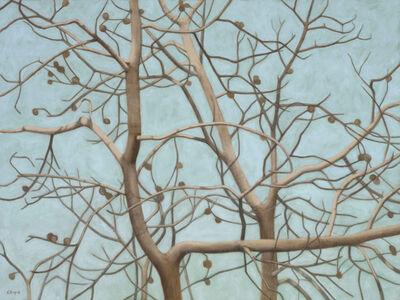Connie Borup, 'Tangles', 2013