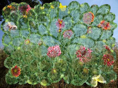 Helen Sear, 'Flower Path 1 ', 2020
