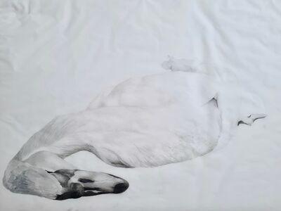 Jessica Ostrowicz, 'Muted Swan', 2020