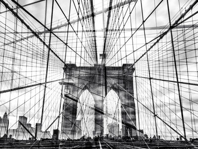 Nicolas Ruel, 'Web (New York, USA)', 2014