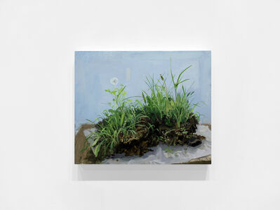 Kristin Musgnug, 'Lawn with Dandeloin, Sorrel, Crabgrass and Nutsedge', 2017