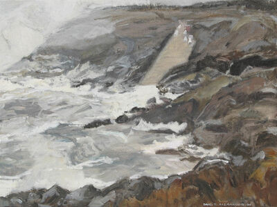 David Alexander, 'The Slip Frog Rolling in at Pouch Cove', 1999