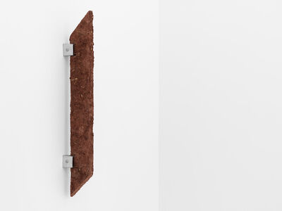 Ximena Garrido-Lecca, 'Disecciones I', 2016