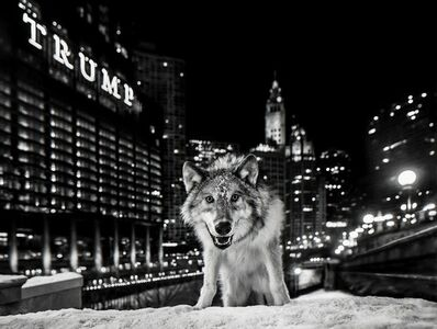 David Yarrow, 'It's Only A Matter Of Time', 2017