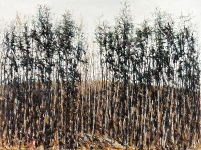 Dolores Justus, 'Tree Line II', 2019