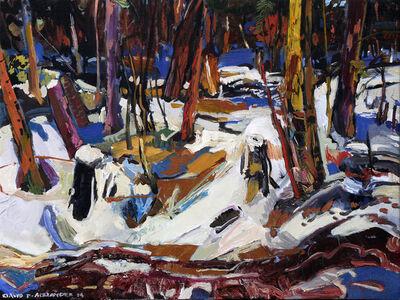 David Alexander, 'Light of Afternoon - Dee Lake', 2014