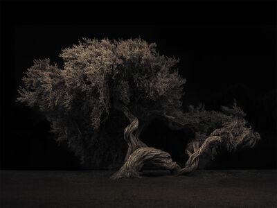 Adam Gerlach, 'Untitled', 2018