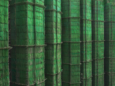 Peter Steinhauer, 'Green Cocoon Walls, Hong Kong - 2010', 2010
