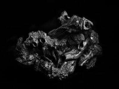 Daniel Eskenazi 丹尼爾·埃斯肯納茨, 'Long Root I 長根 I', 2014