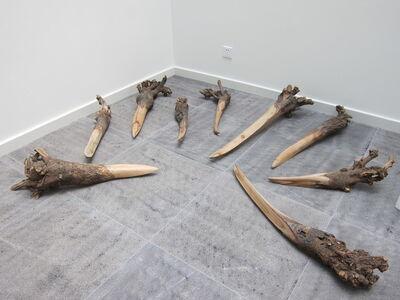 Yang Xinguang, 'Untitled II', 2005