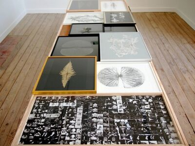 Marie Denis, 'L'herbier estampe, cabinet graphique', 2019