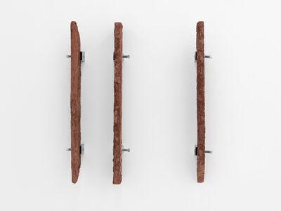 Ximena Garrido-Lecca, 'Disecciones III', 2015