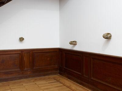 Solange Pessoa, 'Untitled', 1999