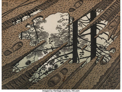 Maurits Cornelis Escher, 'Puddle', 1952