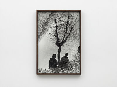 Ed Templeton, 'Barcelona puddle reflection tree, 2012', 2019