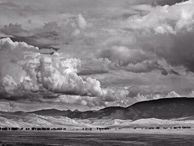 Michael Eastman, 'Elk Preserve, Wyoming #2'