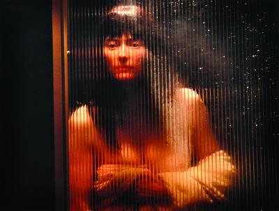 Lynn Hershman Leeson, 'SHOWER', 2002