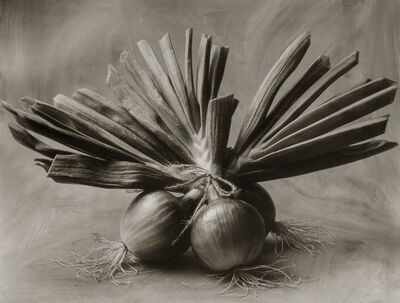 Cy DeCosse, 'Three Asian Onions'