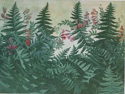 Julia Lucey, 'California Polypody and American Vetch', 2015