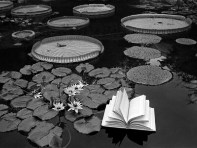 Flor Garduño, 'Lecciones De Botanica, Switzerland', 1997