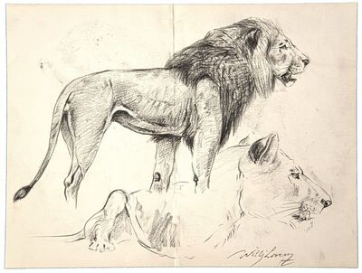Wilhelm Lorenz, 'Study of lion and lioness', 20th Century