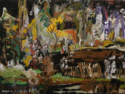 David Alexander, 'Alpine Swamp'